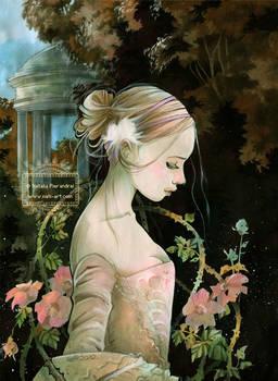 Mademoiselle Rose - Rose
