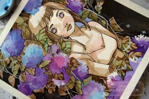 June Hydrangeas