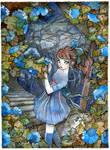 A Sea of Hydrangeas