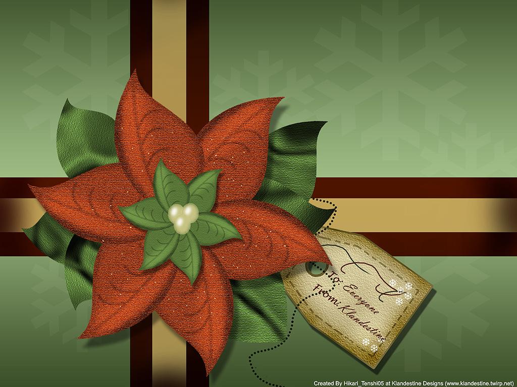 Poinsettia Holiday WP 2007 by hikari-tenshi05