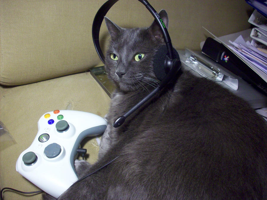 GreyKitty Xbox 4 by SailorUsagiChan