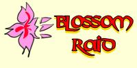 Blossom Raid - Insignia by Kohaya7Kae-13