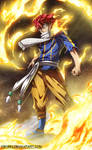 Natsu - Fairy Tail 159