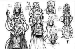 Mary of Silence designs The Asayr
