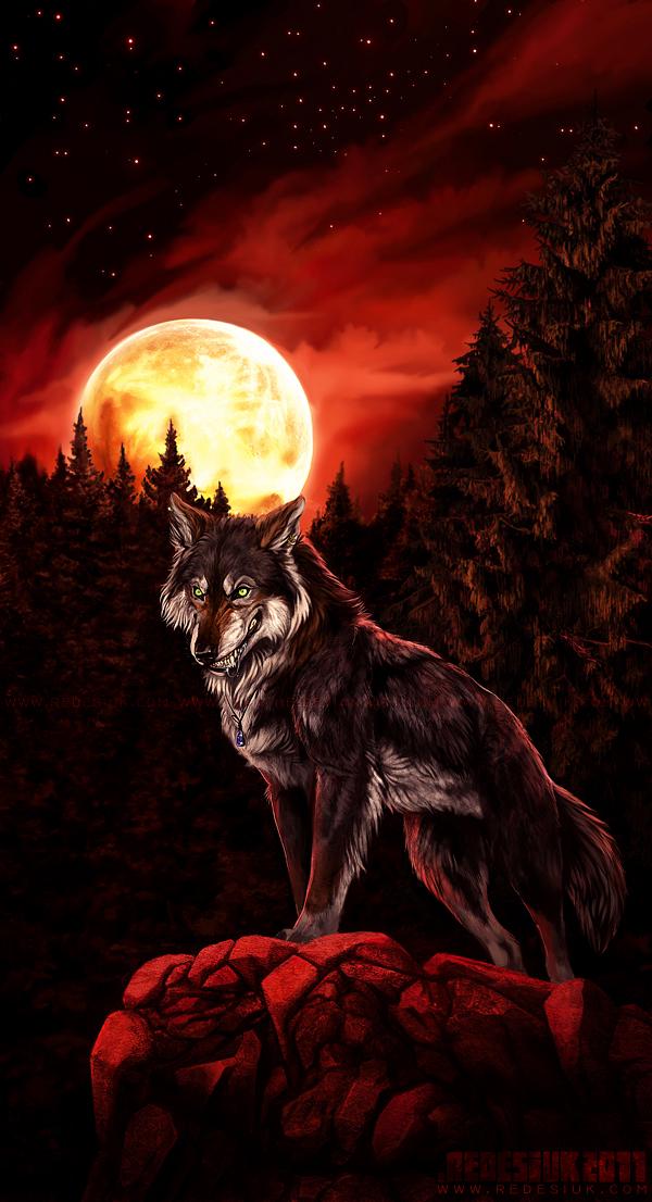 full moon by vesner