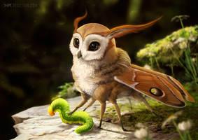 mothling