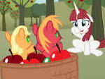 Surprise! Welcome to Sweet Apple Acres!