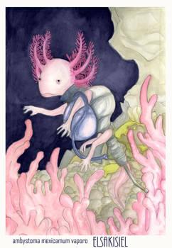 Spray Axolotl