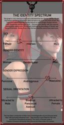 Gender Identity Meme. . .thing by CatalystSpark