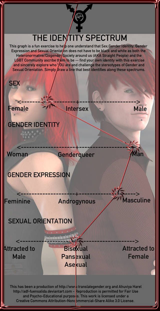 Gender Identity Meme. . .thing by CatalystSpark