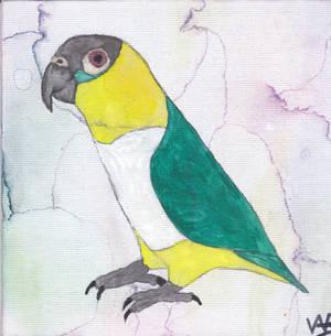 Lorayna in watercolor