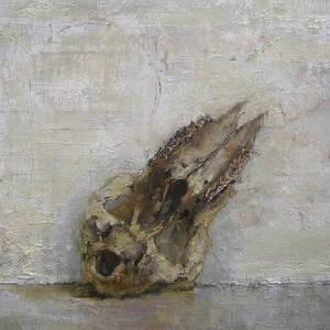 Skull and Circle
