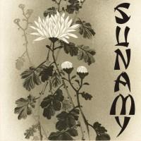 Sunamy by paulow