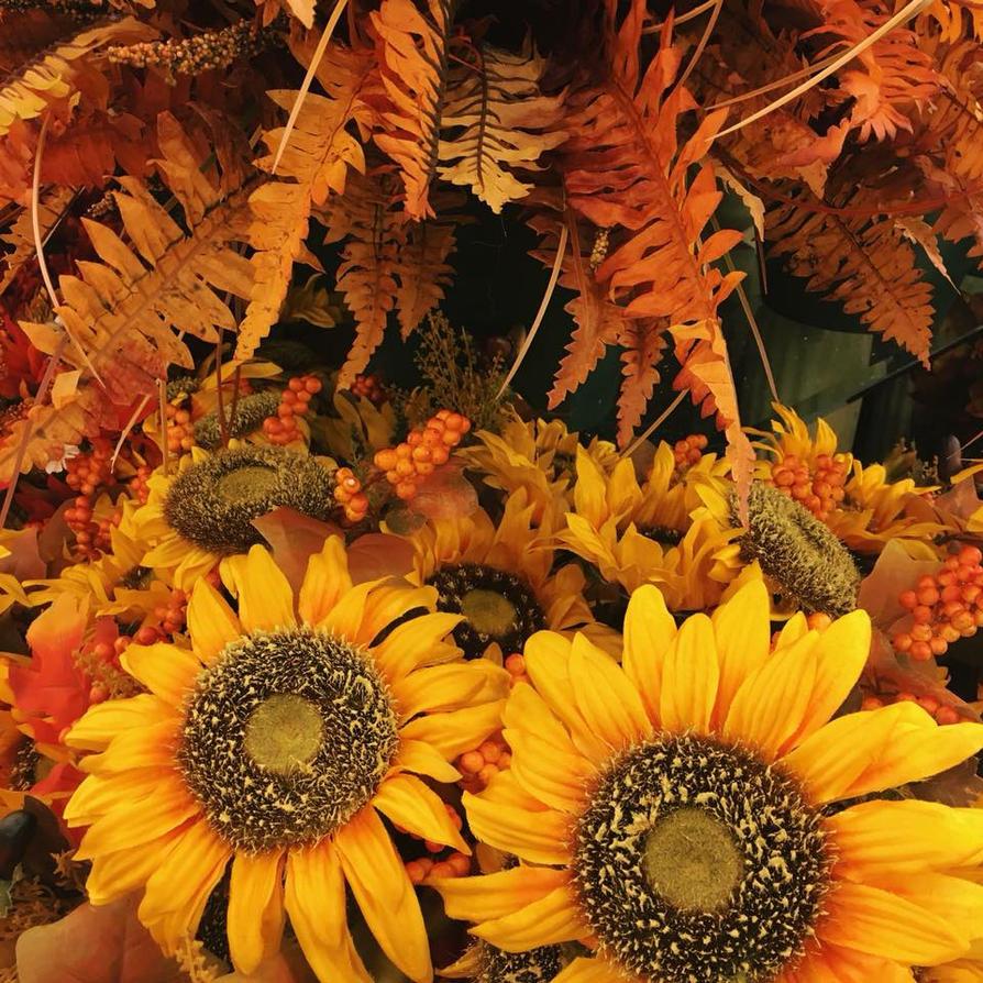 Fall Flora by ShadowsGirl9