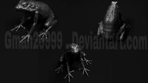 Tree Frog 3D model views