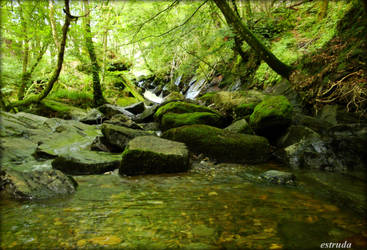 The Pool In The Woods by Estruda