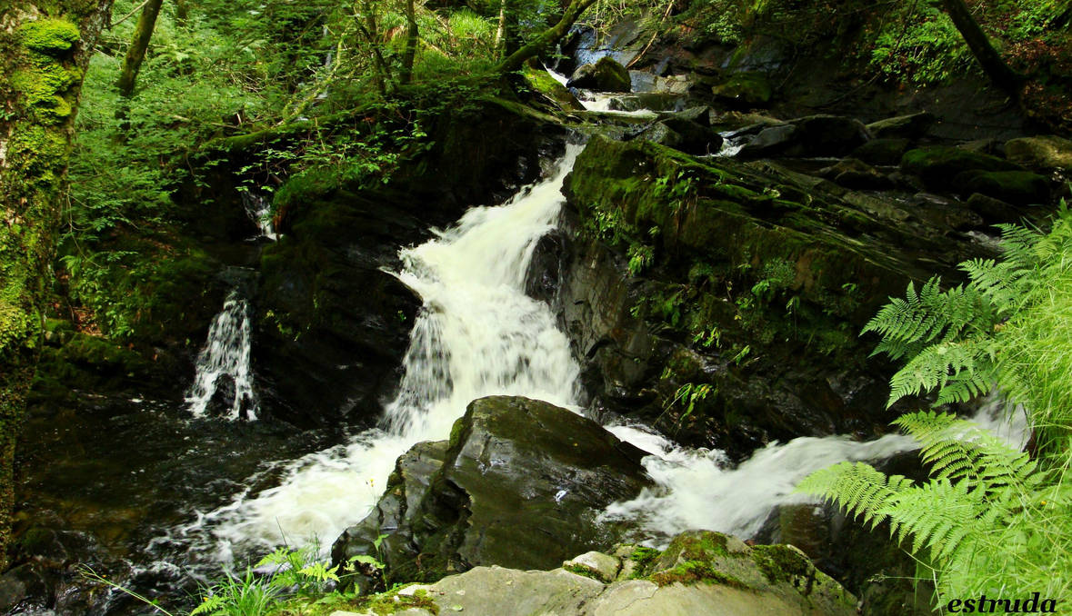 the waterfall in the woods by Estruda