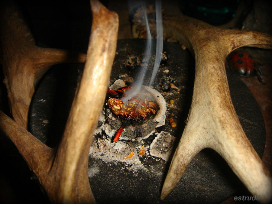 Ladybirds Pagan incense by Estruda