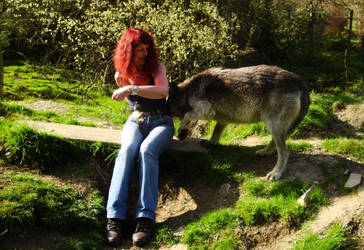 Curious wolf by Estruda