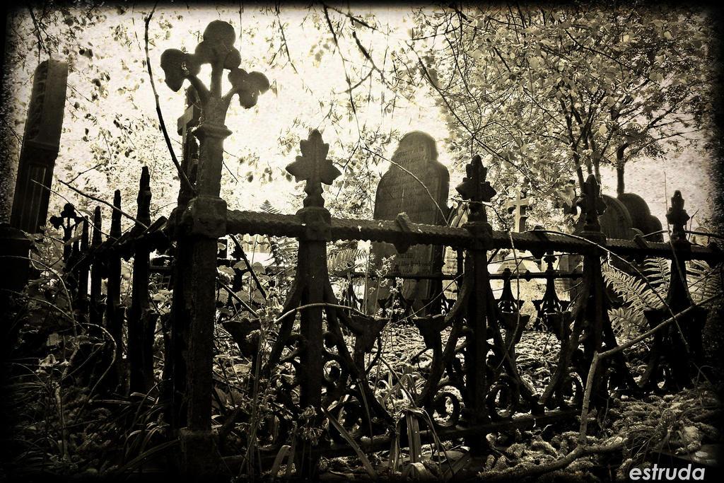 Cemetery Grave by Estruda