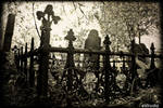 Cemetery Grave