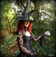 The Witch In The Woods by Estruda