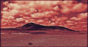 Isolation by Estruda