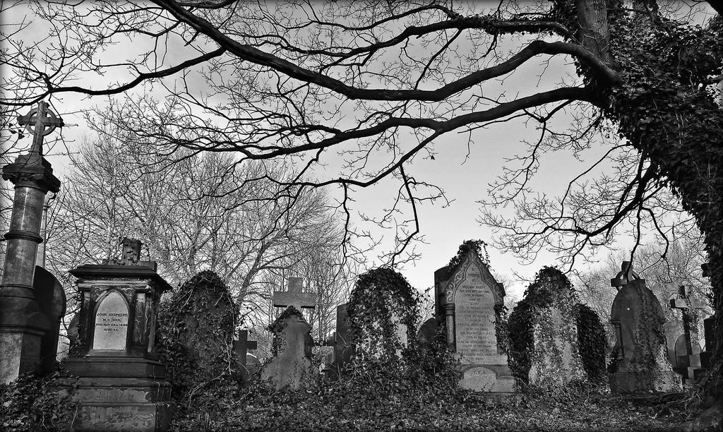 Deathly Silence by Estruda