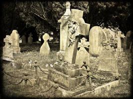 Cemetery View by Estruda