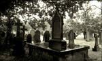 Deaths Shade