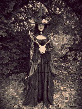 The Witch Prepares For Halloween