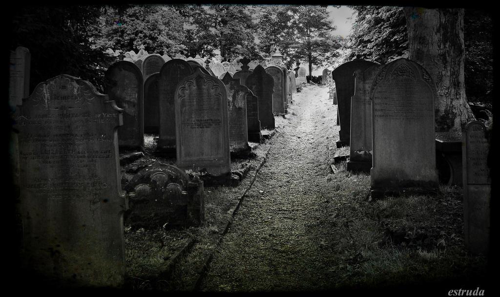 Life's Final Pathway by Estruda