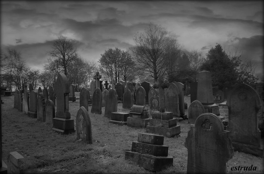 Bleak Cemetery by Estruda