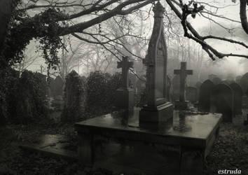 Cemetery Mist by Estruda
