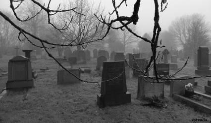 The Fog Begins To Lift by Estruda
