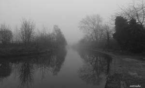 Reflections In The Fog by Estruda