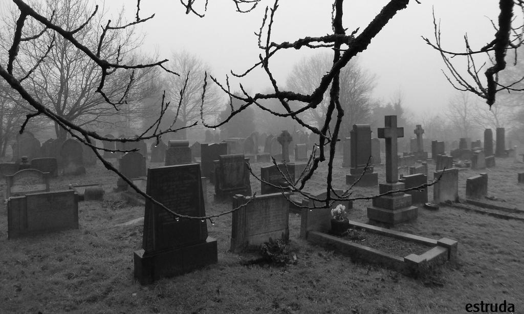 Dew Drops Fog And The Cemetery By Estruda