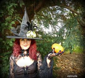 Pumpkin Anyone  ? by Estruda