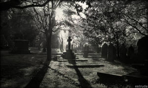 All Is Quiet In The Cemetery