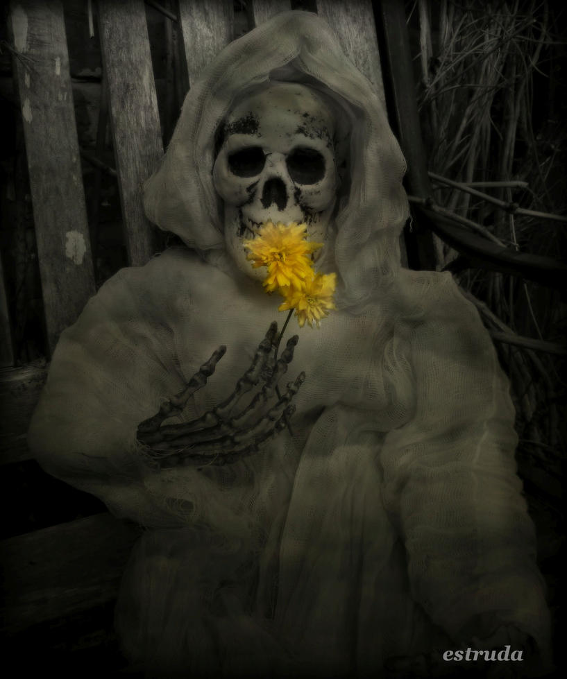 Mrs Reaper Just Loves The Spring by Estruda