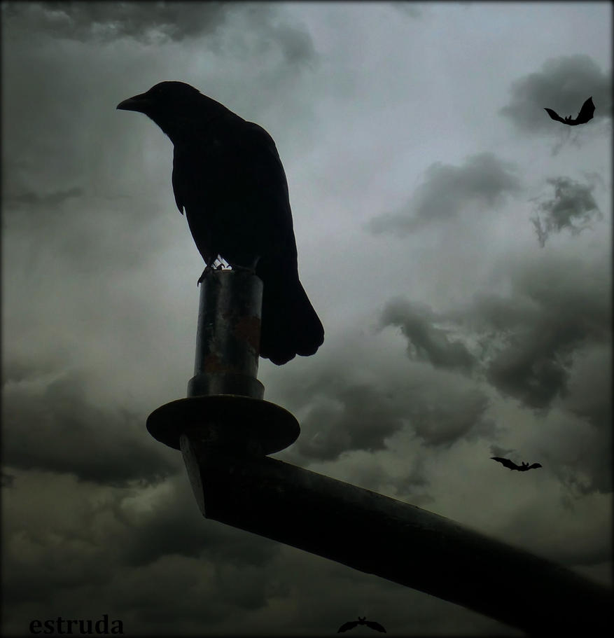 The Raven And The Bats by Estruda
