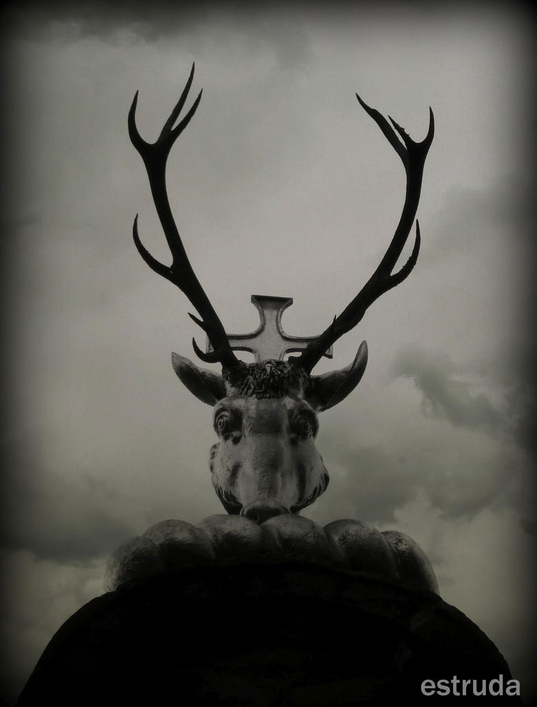 The Horned Beast by Estruda
