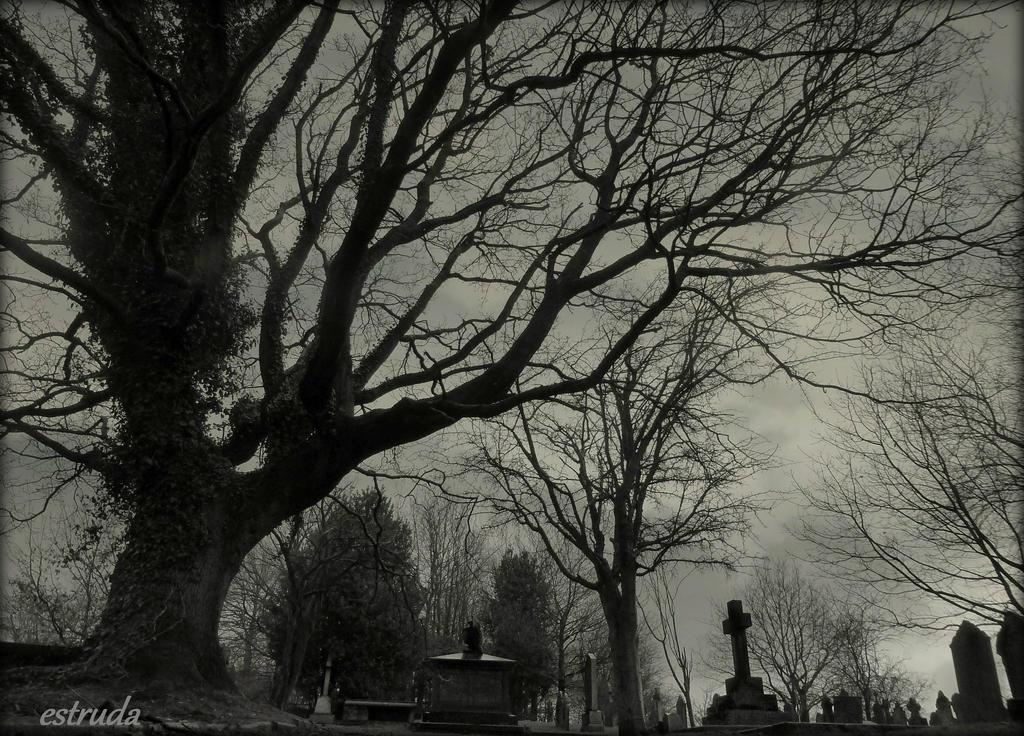 The Cemetery Sleeps by Estruda