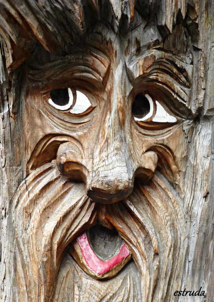 Portrait Of The Wooden Man by Estruda