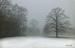 Winter Trees by Estruda