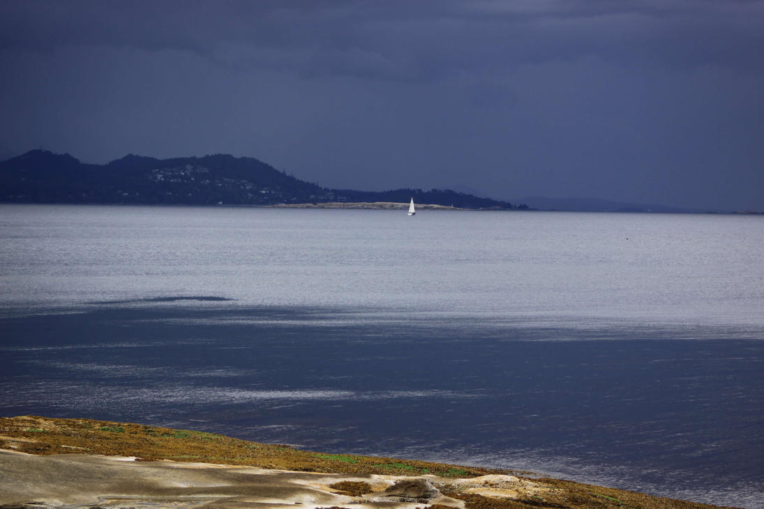Sailing the Gray by Caloxort
