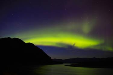 Eagle Aurora Borealis 1 by Caloxort