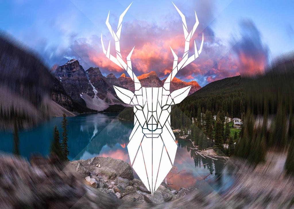 Oh Deer by Gluka-Kon