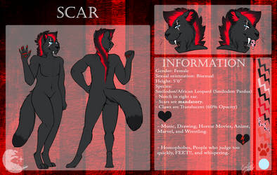Scarcat Reference 2017 by Scintelle
