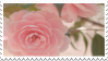 Pink Rose | Stamp by PuniPlush